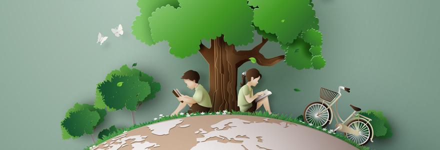 secteur du développement durable et de l'environnement